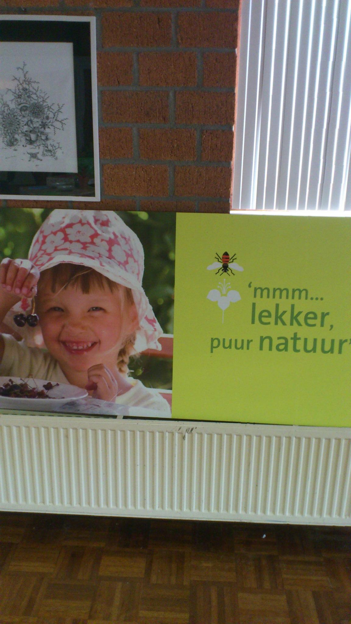 Brede Scholen Project - Landsmeer